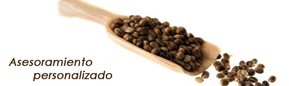 Venta al por menor de semillas en elche y productos de for Productos jardineria