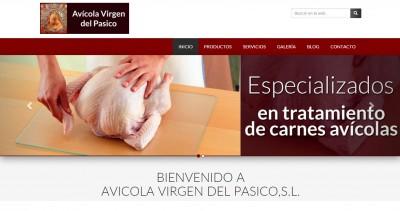 www.avicolapasico.com