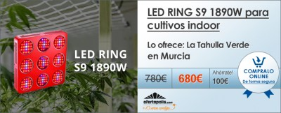led-ring-tahulla-verde