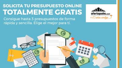 Presupuestos_Online
